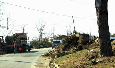 Odvoz dřeva (13 kB)